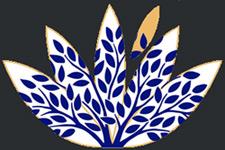 logo yogaroots